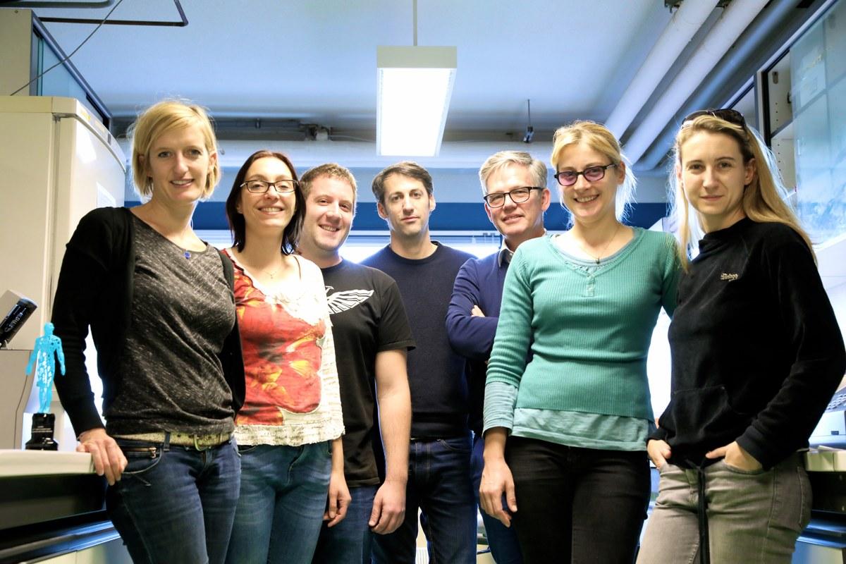 L'équipe de recherche de pascal barbry (ipmc, université côte d'azur), lauréate de l'initiative chan zuckerberg