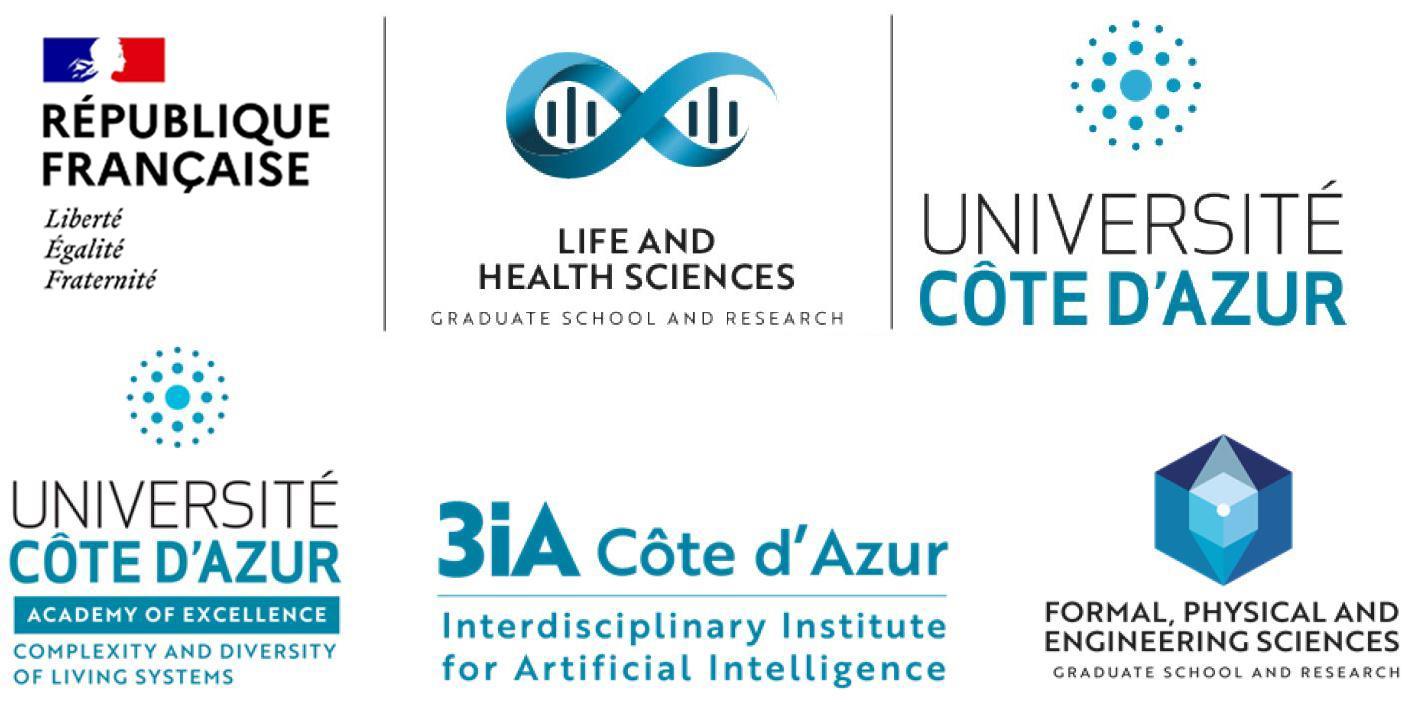 AAP interdisciplinary PhD