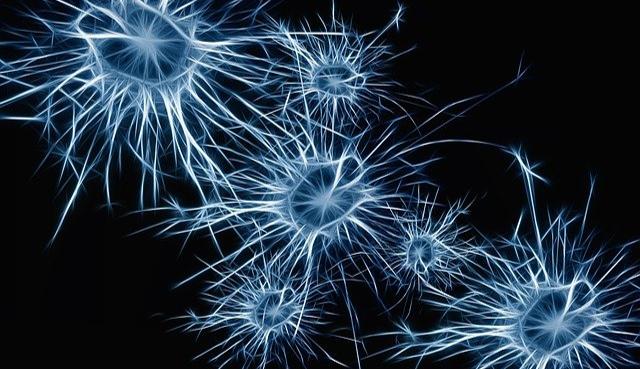 Image neurones sur fond noir