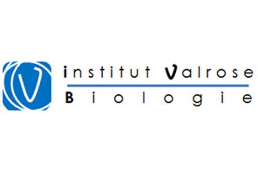 Logo de l'Institut de biologie de Valrose - IBV