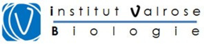 Logo Institut de Biologie Valrose (iBV)