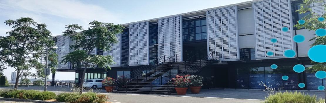 image du campus Polytech
