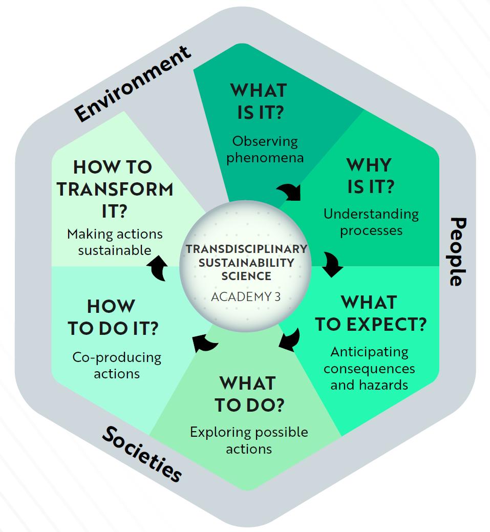 Schéma du continuum proposé dans l'approche projet de l'Académie 3