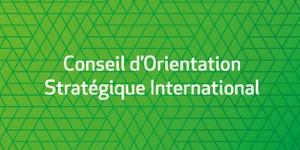 Comité d'orientation stratégique international